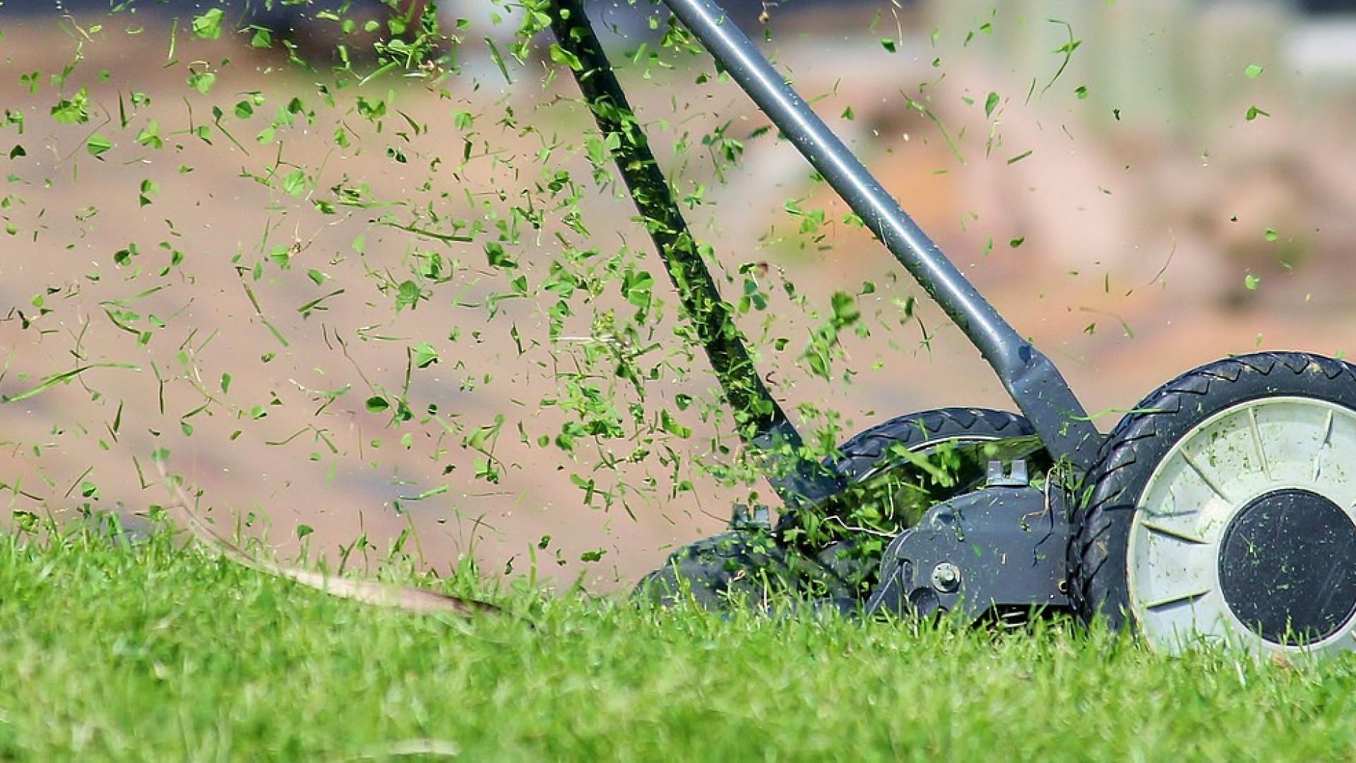 Le gazon de placage un bon plan pour un jardin facile obonplan - Semer gazon sans rouleau ...